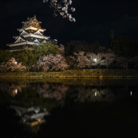 Exploring Japan after dark