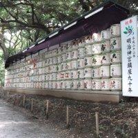Japan 2010: Day 5; Yoyogi Park & Meiji Jingu