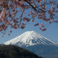 Fujigoko: Mount Fuji's Five Lakes