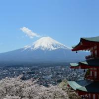 Japan 2017: Day 14- Kawaguchi-ko pt 5; Tanuki-ko, waterfalls and sakura