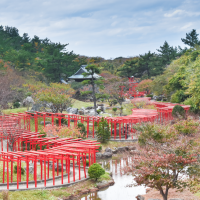 Japan 2019 Day 3: Exploring Aomori by car